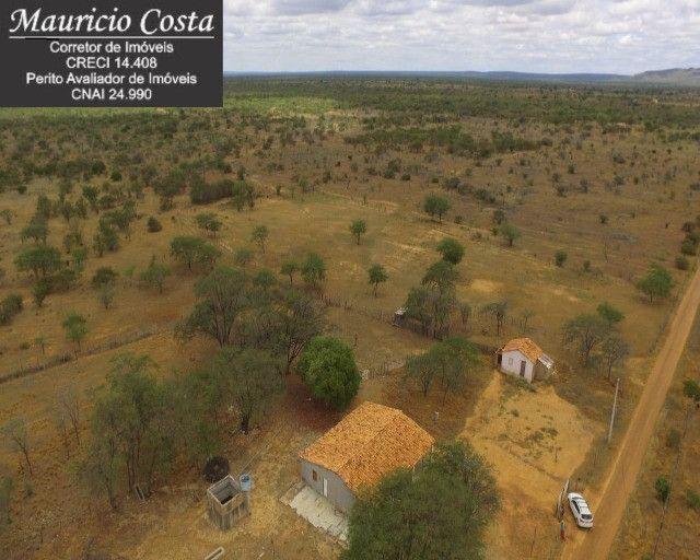 Fazenda à Venda em Campo Formoso - Bahia - Foto 16