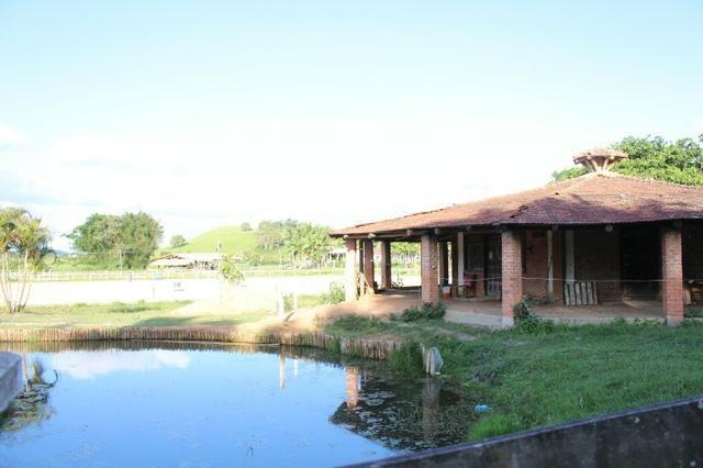 Lindo Sitio em Camboriú - Foto 12