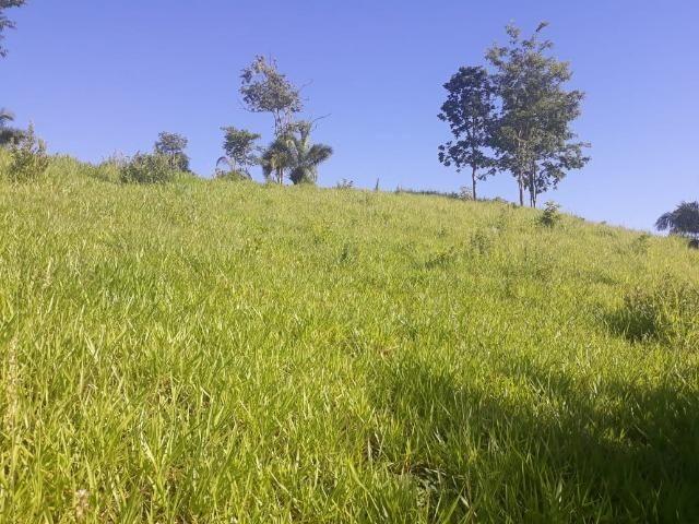Chácara de 54 hectares, chapada,sendo 33 formado