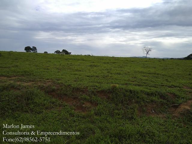 Fazenda em Americano do Brasil! - Foto 7