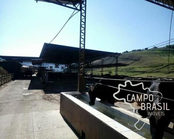 Linda Fazenda no Sul de Minas! Muito conforto e excelentes condições - Foto 9