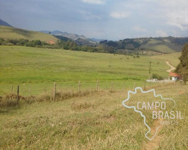 Fazenda de 98 alqueires no Sul de Minas! - Foto 12