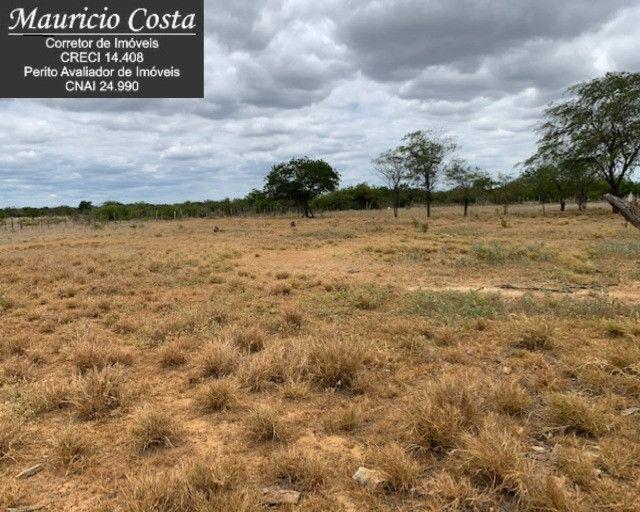 Fazenda à Venda em Campo Formoso - Bahia - Foto 15