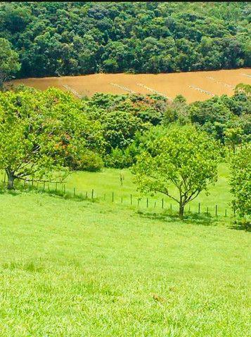 M-91 Grande oportunidade terrenos com 10.000 metros de área verde e vista para a represa - Foto 5