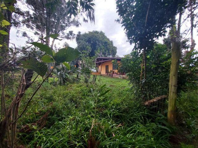 Sitio 8 hectares, 2 casas e pomar, ótimas pastagens, Velleda oferece - Foto 20