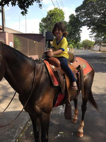 Cavalo meio sangue manga larga - Foto 6