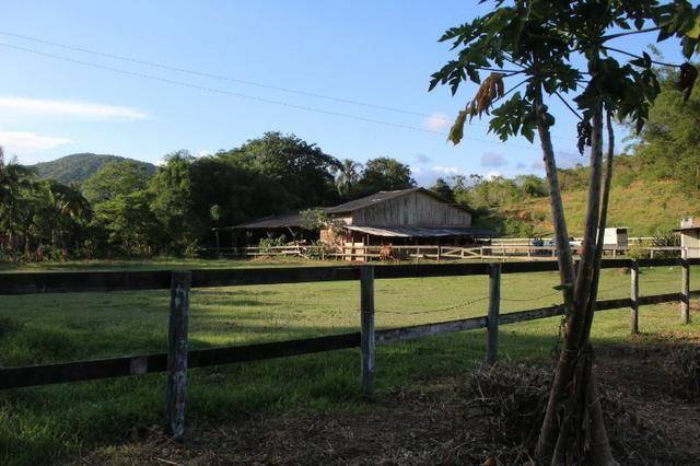 Lindo Sitio em Camboriú - Foto 13