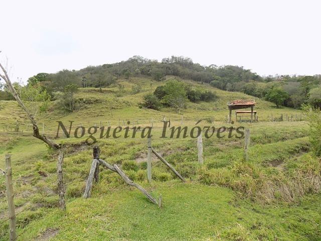 Fazenda de 65 alqueires na região (Nogueira Imóveis Rurais) - Foto 6