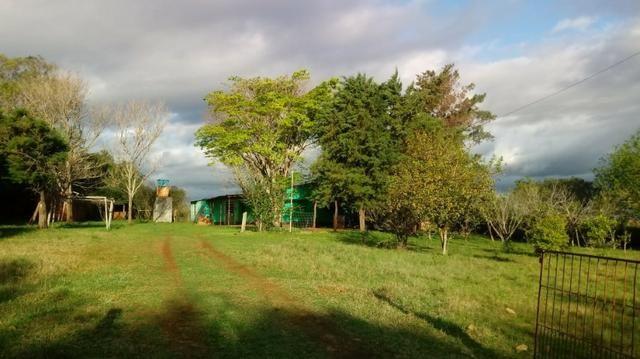 (AR1126) Chácara em Santo Antônio das Missões, RS - Foto 13