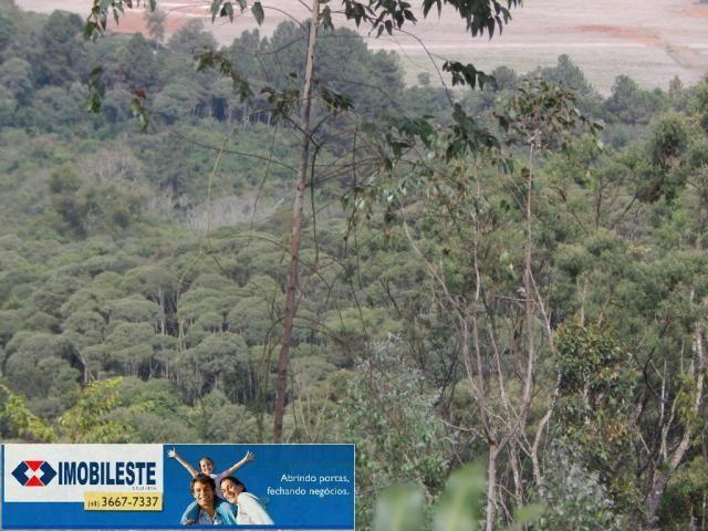 Terreno à venda em Lustosa arroio grande, Ipiranga cod:10330.1860 - Foto 9