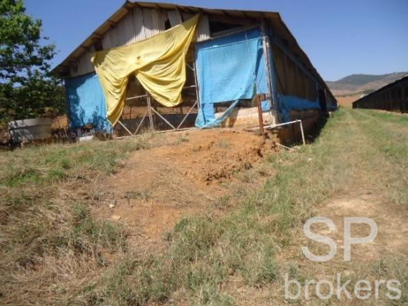 Chácara à venda com 1 dormitórios em Serra de cima, Serra negra cod:FA002536 - Foto 10