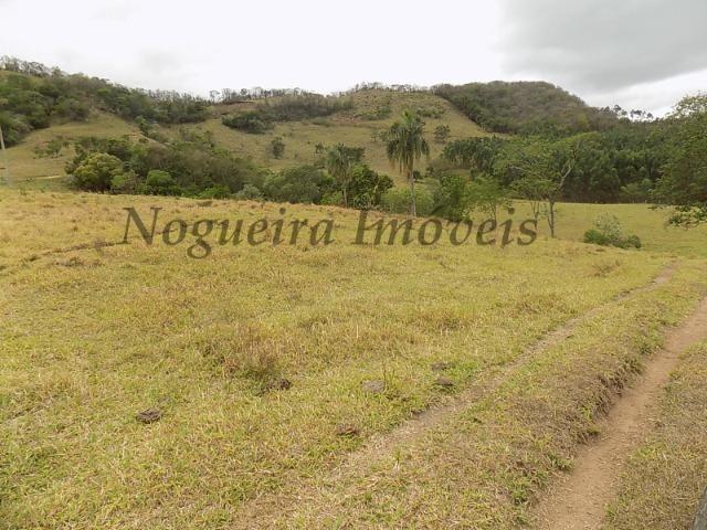 Fazenda de 65 alqueires na região (Nogueira Imóveis Rurais) - Foto 2