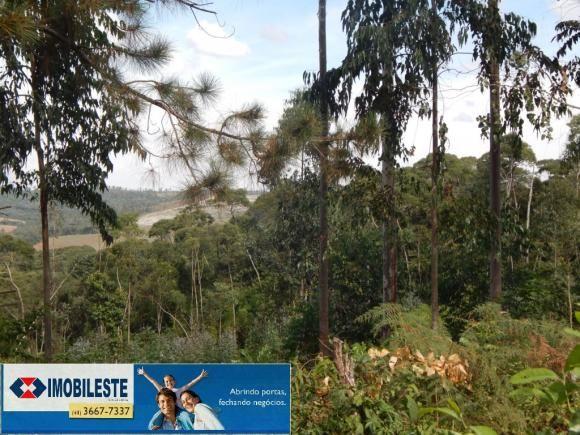 Terreno à venda em Lustosa arroio grande, Ipiranga cod:10330.1860 - Foto 8