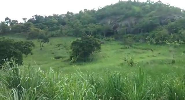 Propriedade de 140 hectares, entre Vitória e Escada-PE. - Foto 14