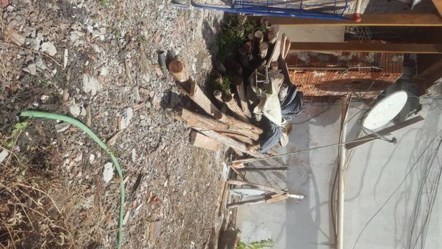 Escoras de eucalipto usadas