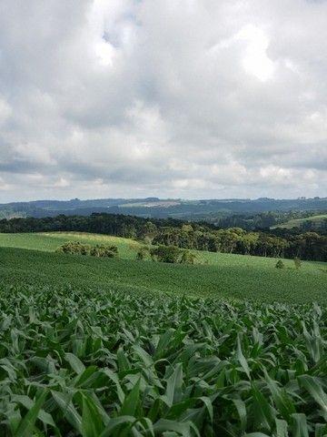 Terreno rural  - Foto 4