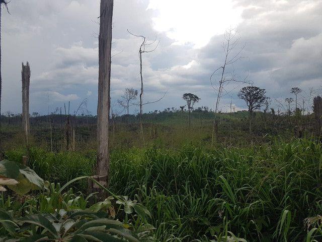 Fazenda Surubim  - Foto 2