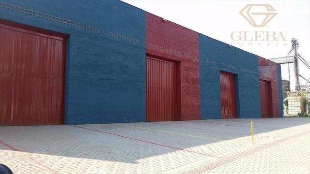 Barracão comercial, Cilo 3, Londrina, 508,82m² BA0008 - Foto 4