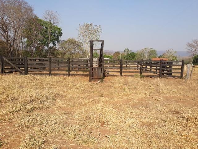 Chácara de 54 hectares, chapada,sendo 33 formado - Foto 2