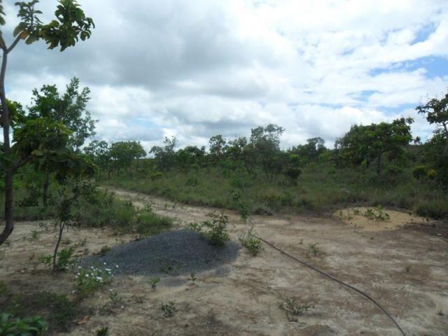 Chácara à venda com 3 dormitórios em Zona rural, Três marias cod:394 - Foto 15