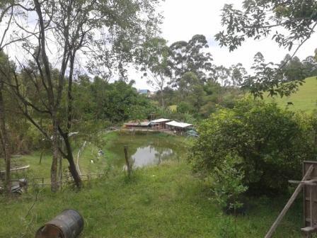 Sítio à venda com 3 dormitórios em Moinhos, Conselheiro lafaiete cod:8388 - Foto 7