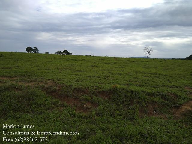 Fazenda em Americano do Brasil! - Foto 6