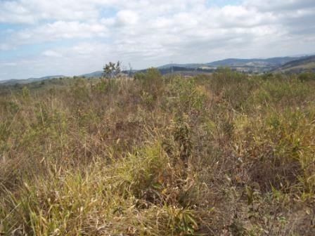 Terreno à venda em Maracujá, Ouro preto cod:4267 - Foto 6