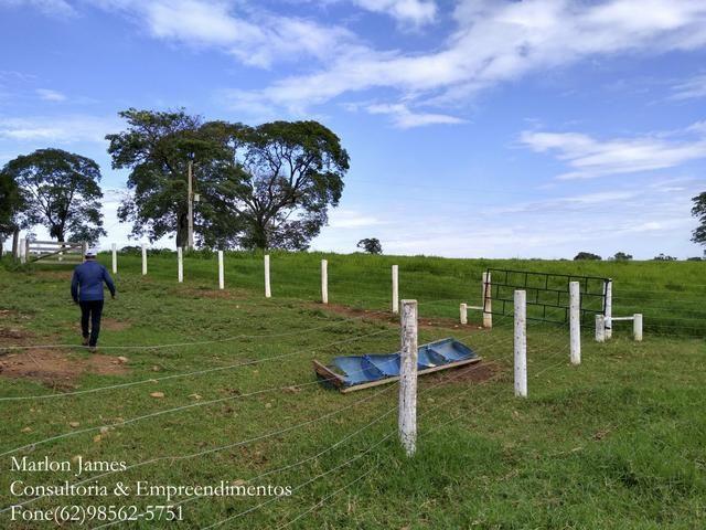 Fazenda em Americano do Brasil! - Foto 12