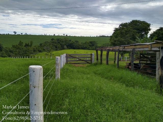 Fazenda em Americano do Brasil! - Foto 13