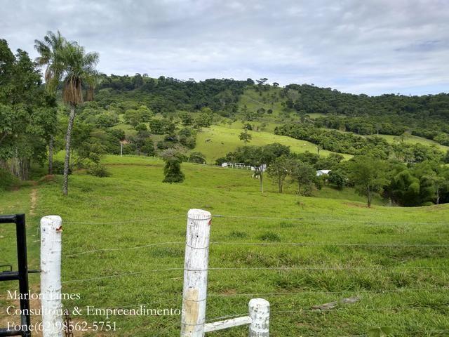 Fazenda em Americano do Brasil! - Foto 16