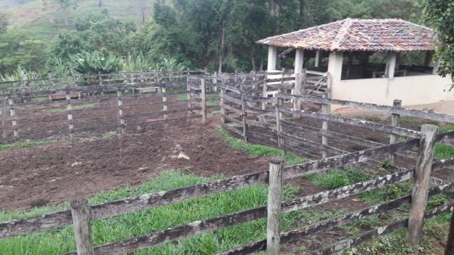 Chácara à venda em Centro, Piranga cod:5190 - Foto 8
