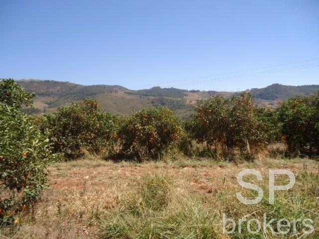 Chácara à venda com 1 dormitórios em Serra de cima, Serra negra cod:FA002536 - Foto 2