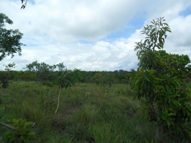 Chácara à venda com 3 dormitórios em Zona rural, Três marias cod:394 - Foto 13