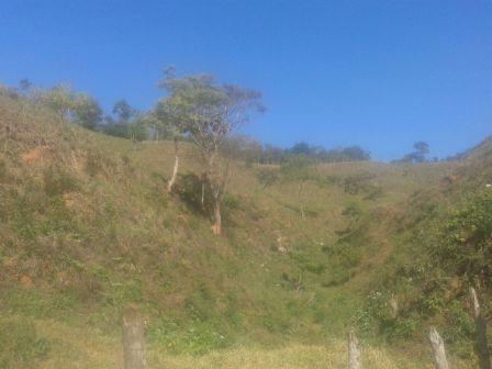 Sítio à venda em Zona rural, Piranga cod:7854 - Foto 7