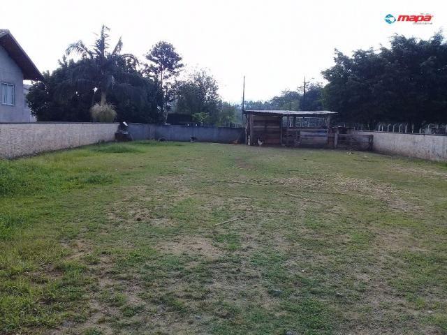 Terreno para alugar em Araponguinhas, Timbó cod:2557 - Foto 5