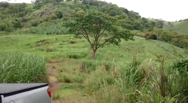 Propriedade de 140 hectares, entre Vitória e Escada-PE. - Foto 15