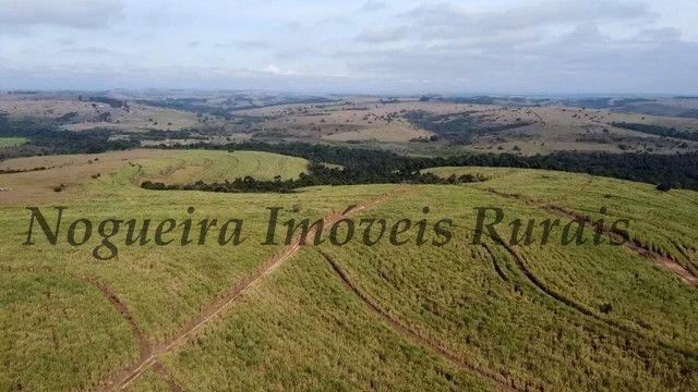 Fazenda com 69 alqueires na região (Nogueira Imóveis Rurais) - Foto 13