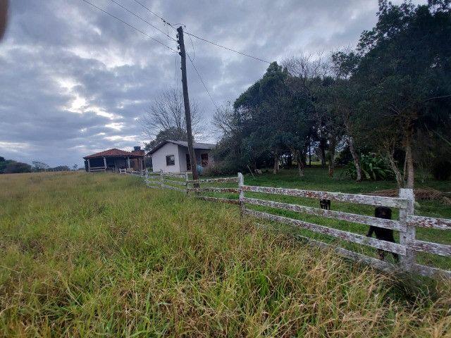 Sitio 8 hectares, 2 casas e pomar, ótimas pastagens, Velleda oferece - Foto 11