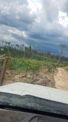 Fazenda Surubim  - Foto 3