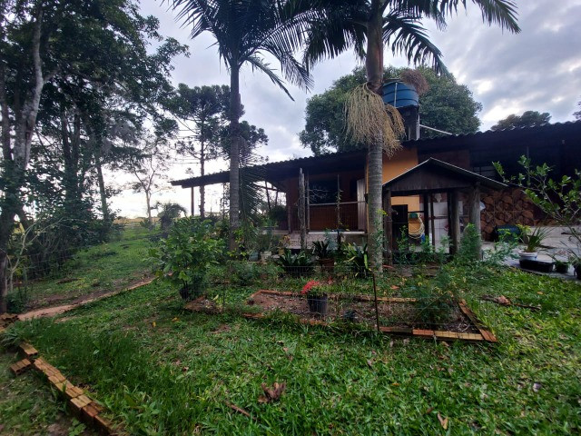 Sitio 8 hectares, 2 casas e pomar, ótimas pastagens, Velleda oferece - Foto 18
