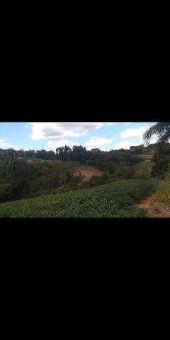 Chácara 10.000m² Bateias Campo Largo Curitiba - Foto 6