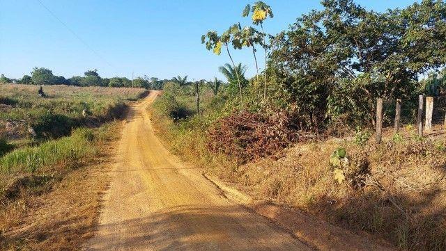 Vendo Sítio de 35 Hectares no KM 100, Ramal São Bernardo. BR 319.   - Foto 18