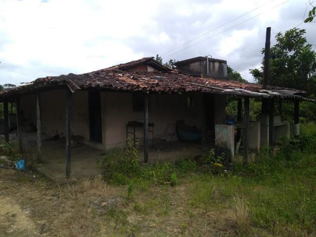 Chacara - Foto 7