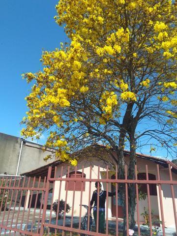 Casinha Aconchegante - Foto 5