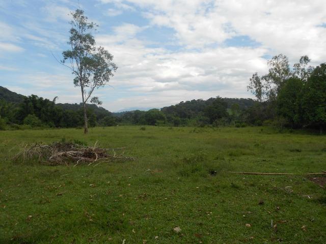 Jordão Corretores - Fazendinha 18 hectares Cachoeiras de Macacu - Foto 13