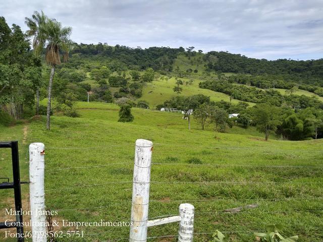 Fazenda em Americano do Brasil! - Foto 15