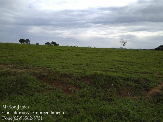 Fazenda em Americano do Brasil! - Foto 8
