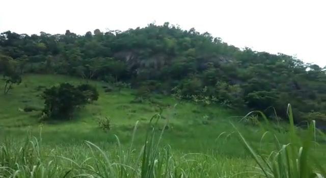 Propriedade de 140 hectares, entre Vitória e Escada-PE. - Foto 5