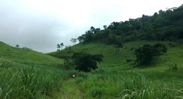 Propriedade de 140 hectares, entre Vitória e Escada-PE. - Foto 4