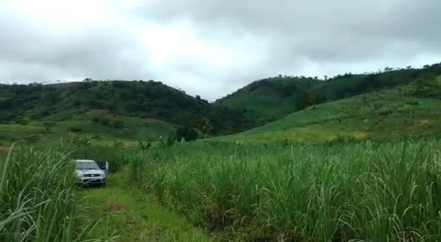 Propriedade de 140 hectares, entre Vitória e Escada-PE. - Foto 9